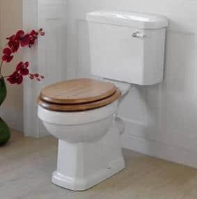 toilet repair in bastrop county